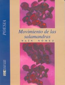 nain-nomez-portada-libro4